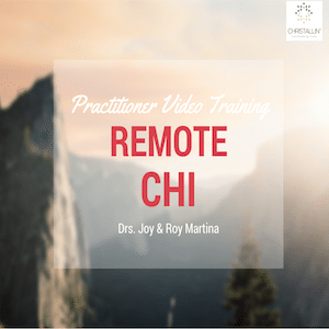 Remote CHI Practitioner Video Cursus