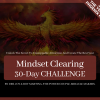 30-DAY Quantum Materialization Challenge (year long access)